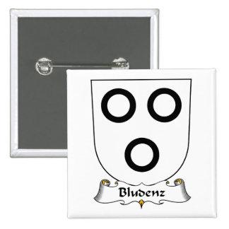 Escudo de la familia de Bludenz Pins