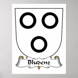 Escudo de la familia de Bludenz Posters