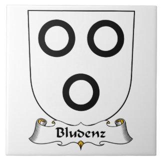 Escudo de la familia de Bludenz Tejas