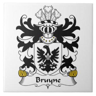 Escudo de la familia de Bruyne Azulejo Cuadrado Grande