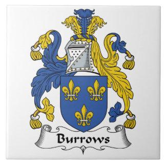 Escudo de la familia de Burrows Azulejo