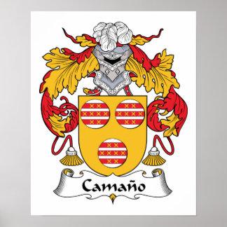 Escudo de la familia de Camano Posters