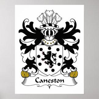 Escudo de la familia de Caneston Poster
