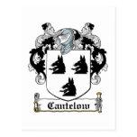 Escudo de la familia de Cantelow Tarjeta Postal