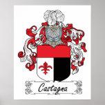 Escudo de la familia de Castagna Poster