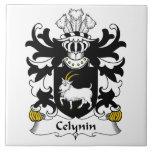 Escudo de la familia de Celynin Tejas Ceramicas