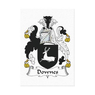 Escudo de la familia de Downes Impresión En Lienzo Estirada
