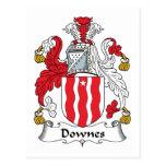Escudo de la familia de Downes Tarjeta Postal