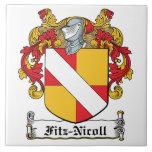 Escudo de la familia de Fitz-Nicoll Azulejo