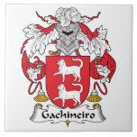 Escudo de la familia de Gachineiro Tejas Cerámicas