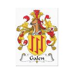 Escudo de la familia de Galen Impresion De Lienzo