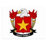 Escudo de la familia de Gavit Tarjetas Postales