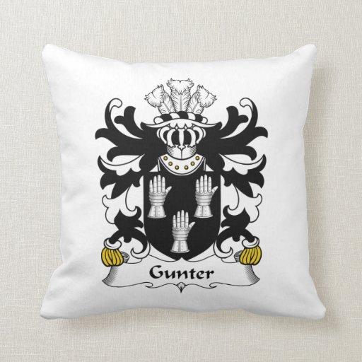 Escudo de la familia de Gunter Almohadas