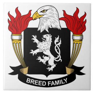 Escudo de la familia de la raza azulejos cerámicos