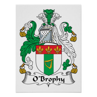 Escudo de la familia de O'Brophy Póster