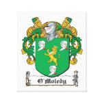 Escudo de la familia de O'Moledy Lona Estirada Galerías