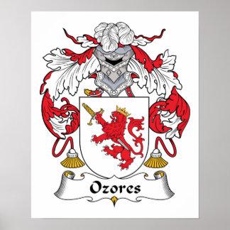 Escudo de la familia de Ozores Poster