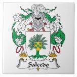 Escudo de la familia de Salcedo Teja Ceramica