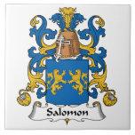 Escudo de la familia de Salomon Tejas