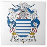 Escudo de la familia de Salvatierra Azulejo Ceramica