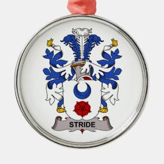 Escudo de la familia del paso grande adorno redondo plateado
