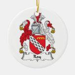 Escudo de la familia del rayo adorno de reyes