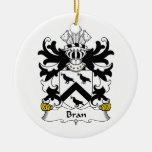 Escudo de la familia del salvado ornamente de reyes