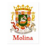 Escudo de Molina de Puerto Rico Postales