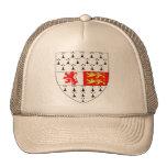 Escudo del condado de Carlow, Irlanda Gorro De Camionero