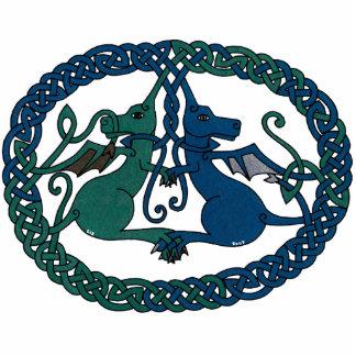 Escudo doble del dragón pin fotoescultura