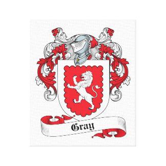Escudo gris de la familia lona envuelta para galerias
