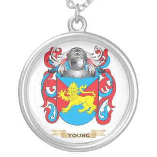 Escudo inglés joven de la familia (escudo de armas colgante redondo