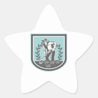 Escudo orgánico de la planta de Grabhoe del granje Colcomanias Forma De Estrella