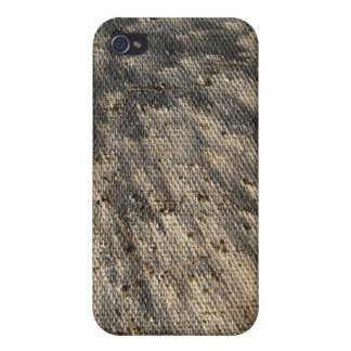 Escudo térmico de la cápsula de los géminis iPhone 4/4S funda