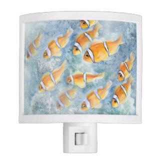 Escuela de Clownfish Luz De Noche
