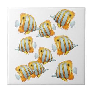 Escuela de la teja de los pescados de la mariposa
