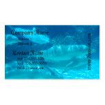 Escuela de las tarjetas de visita de los delfínes