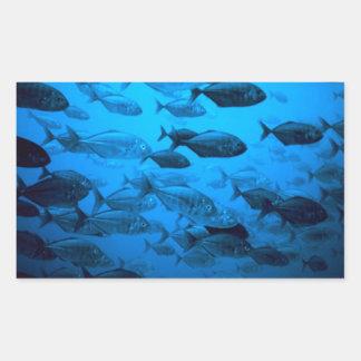 Escuela de los pescados de Jack Rectangular Pegatina