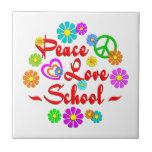 Escuela del amor de la paz tejas