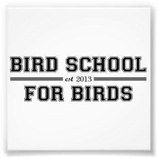Escuela del pájaro que está para los pájaros impresiones fotograficas