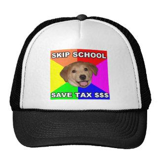 Escuela del salto del perro del consejo gorro
