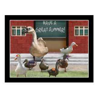 Escuela hacia fuera, pequeños anadones con el postal
