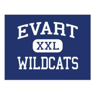 Escuela secundaria Evart Michigan de los gatos Postales