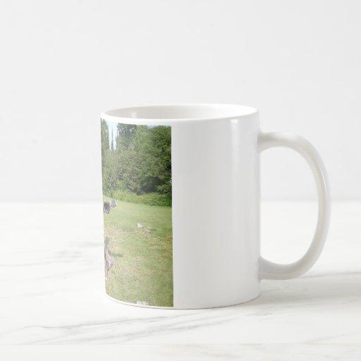 esculpir las fotos 028 taza básica blanca