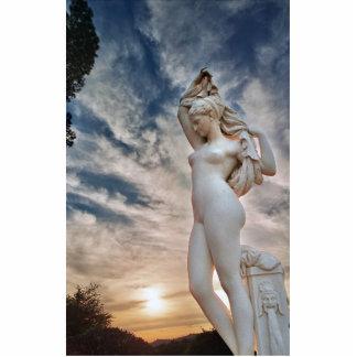 Escultura Adorno Fotoescultura