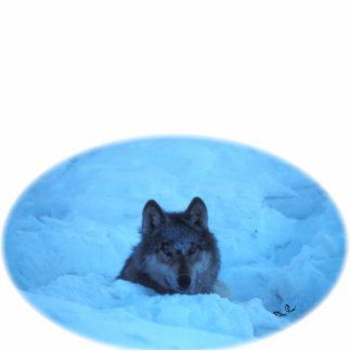 Escultura azul de la foto del lobo de madera de la fotoescultura vertical