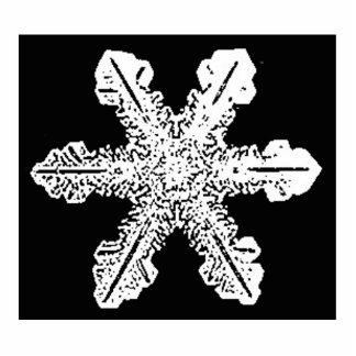 Escultura blanco y negro del copo de nieve fotoescultura vertical