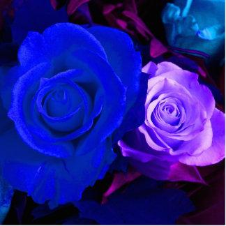 Escultura color de rosa púrpura azul de la foto esculturas fotograficas