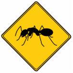 Escultura cortada hormiga de la muestra de camino esculturas fotograficas