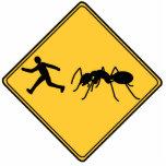 Escultura cortada hormiga gigante de la muestra de escultura fotografica